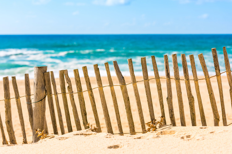 Sand dunes: a natural barrier against swells and storms | Photo: Shutterstock
