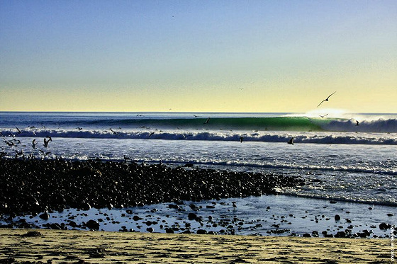Trestles: reject the toll road, support surfing