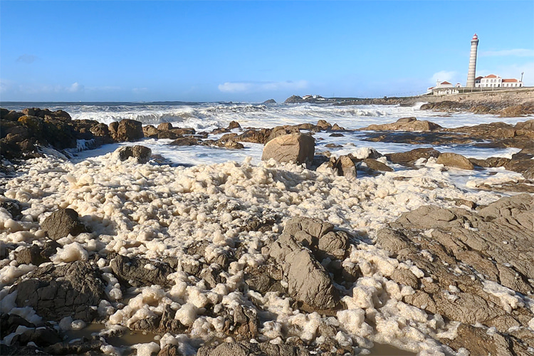 Sea foam: a consequence of mechanical and chemical processes | Photo: SurferToday.com