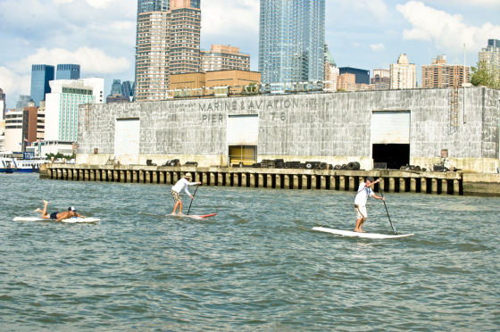 Sea Paddle NYC: SUP between tall towers