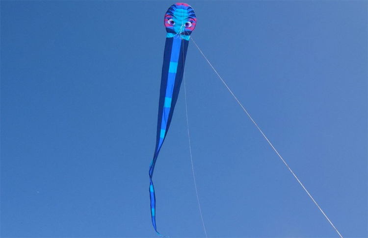 Serpent: adding more kite tail reduces volatile instability | Photo: Peter Lynn