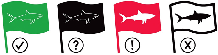 Shark activity: South Africa's Shark Spotters use a four-flag warning system