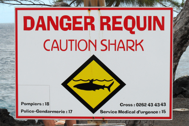 Shark attacks: respect the the beach flags and warning signs | Photo: Creative Commons