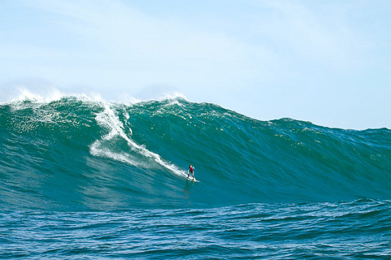 Big Tuesday: Shipstern Bluff goes wild