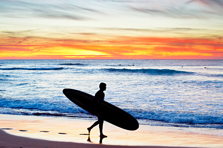 Surfing: impossible to quit it | Photo: Shutterstock