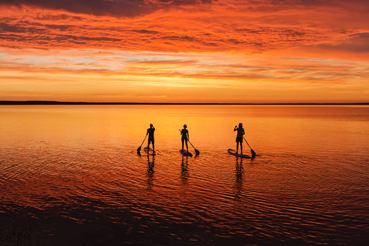 SUP: there are over a dozen ways of enjoying stand-up paddling and paddleboarding | Photo: Shutterstock