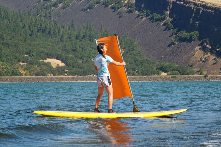 Stand-up paddleboarding: it's SUPer fun | Photo: Roll-Up Sail