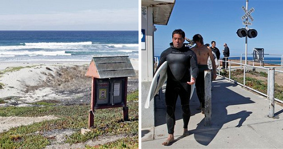 Surf Beach: shark attacks have claimed another life