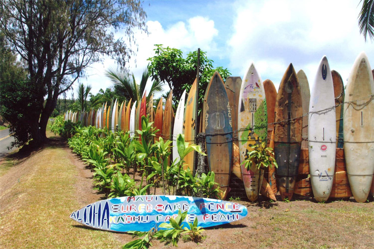 Largest Surfboard Collection: you only need 647 surfboards to build a fence