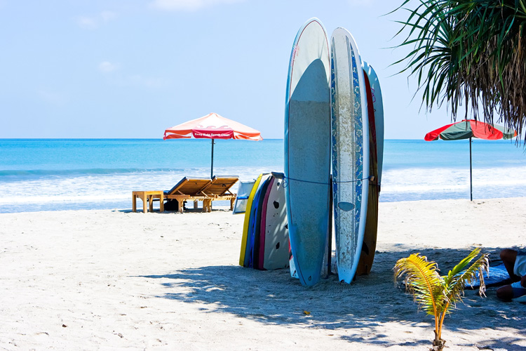 Surfboard rentals: choose a service located near the beach | Photo: Shutterstock