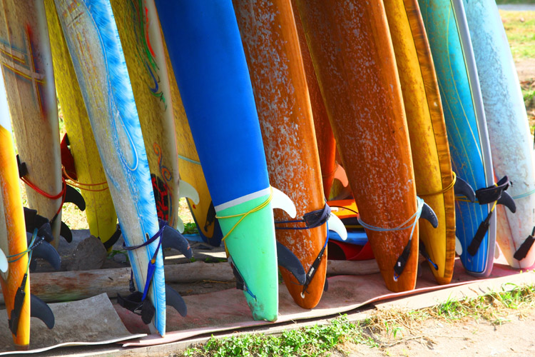 Surfboards: there are seven main types of boards - shortboards, longboards, fish boards, malibu/funboards, guns, tow-in boards, and stand-up paddleboards | Photo: Shutterstock