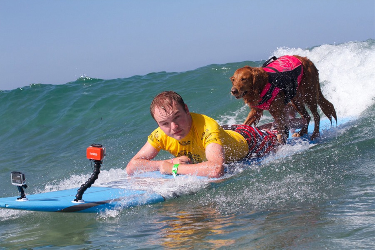 Surf Dog Ricochet: changing lives through surfing | Photo: Surf Dog Ricochet