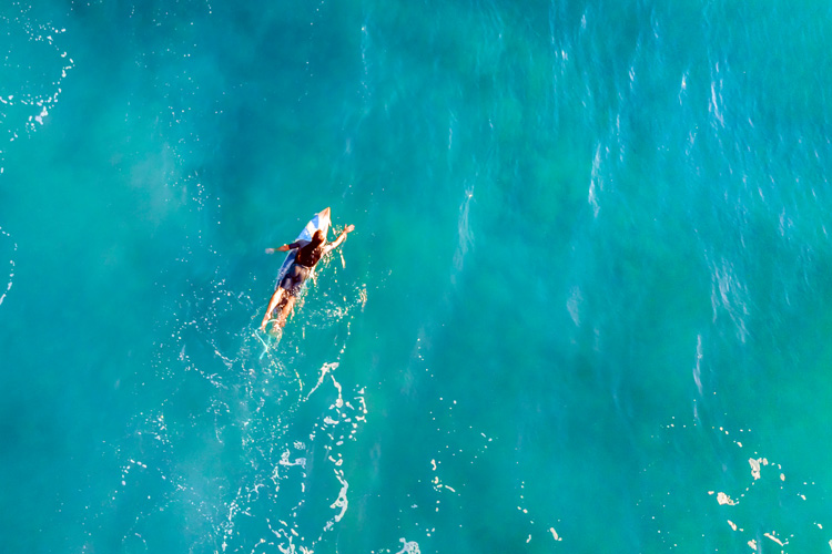 Paddling: surfers need to be good swimmers | Photo: Shutterstock