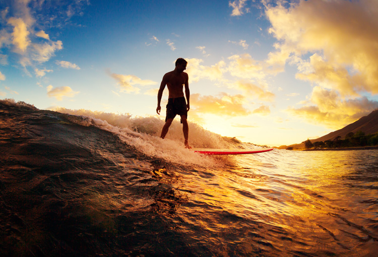 Surfing: a sport for life and business