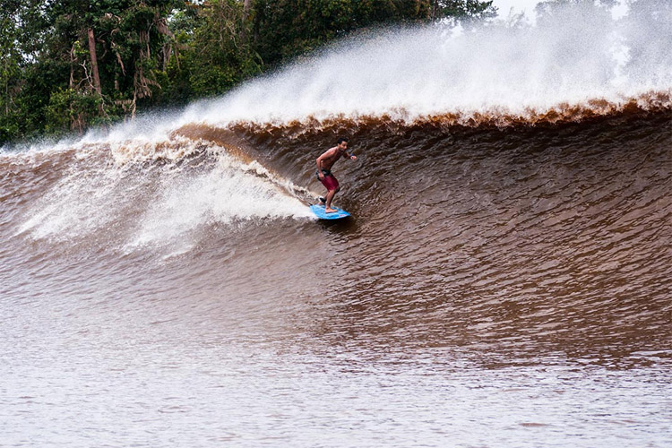 The Bono: riding endless waves | Photo: Rip Curl
