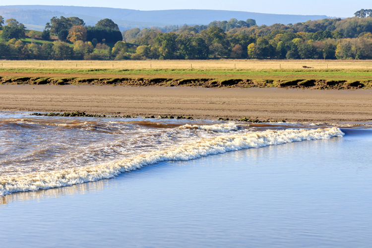Tidal bore: a rare and often violent phenomenon | Photo: Shutterstock