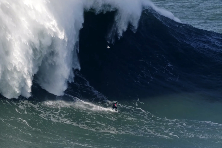 Tom Butler: he may have broken the Guinness World Record for the largest wave ever surfed