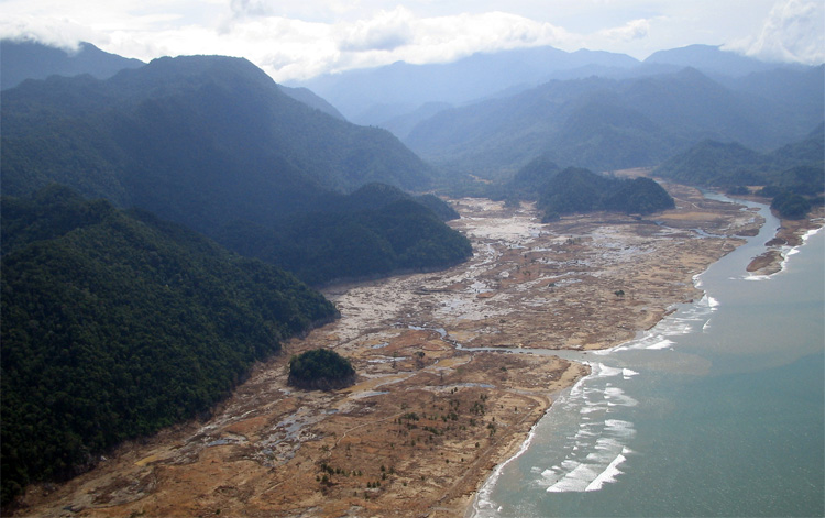 Tsunami: it only spares palm trees | Photo: Creative Commons