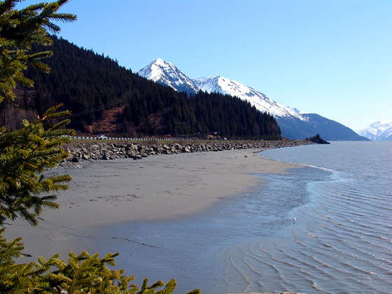 Turnagain Arm: Del Carpenter should try this spot in Alaska