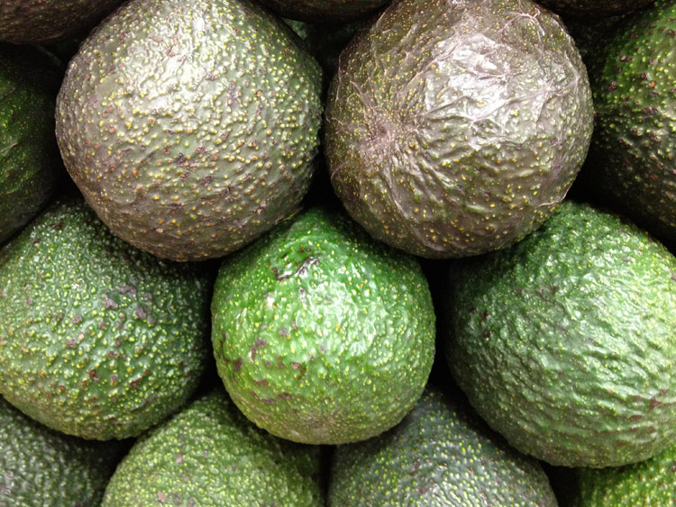 Avocados: California produces 90 percent of all avocados in the US | Photo: Creative Commons