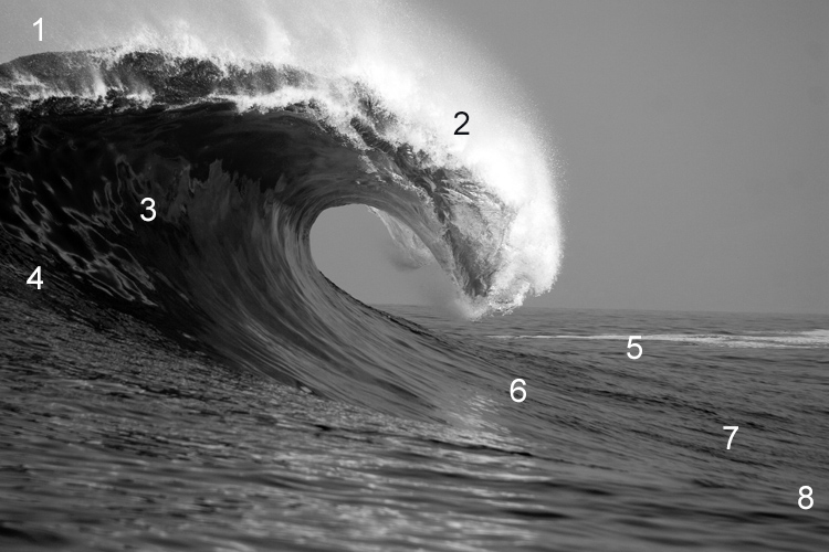 Wave: surfers must negotiate all energy zones differently