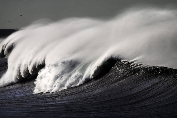 Wind: the main element in the creation of ocean waves | Photo: Shutterstock