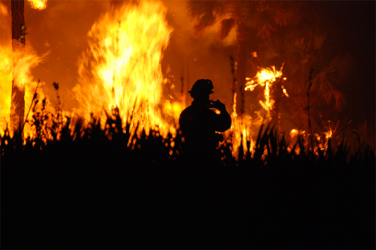 Wildfires: are they a consequence of extreme weather events? | Photo: Creative Commons