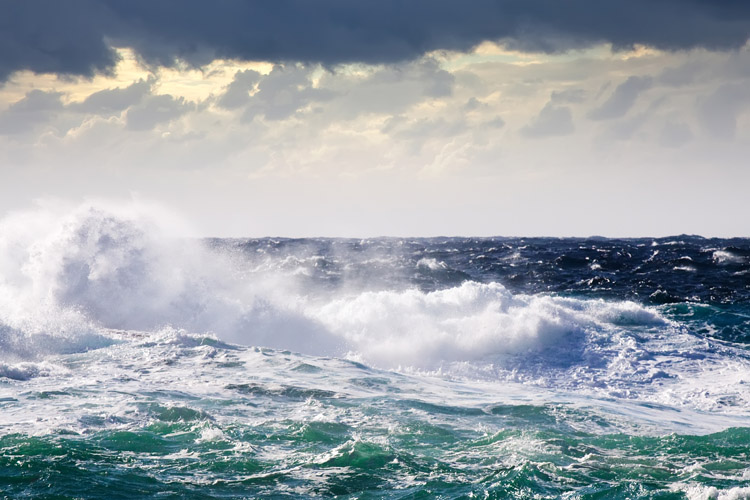 Wind gusts: a sudden, abrupt, and brief increase in the speed and direction of the wind | Photo: Shutterstock