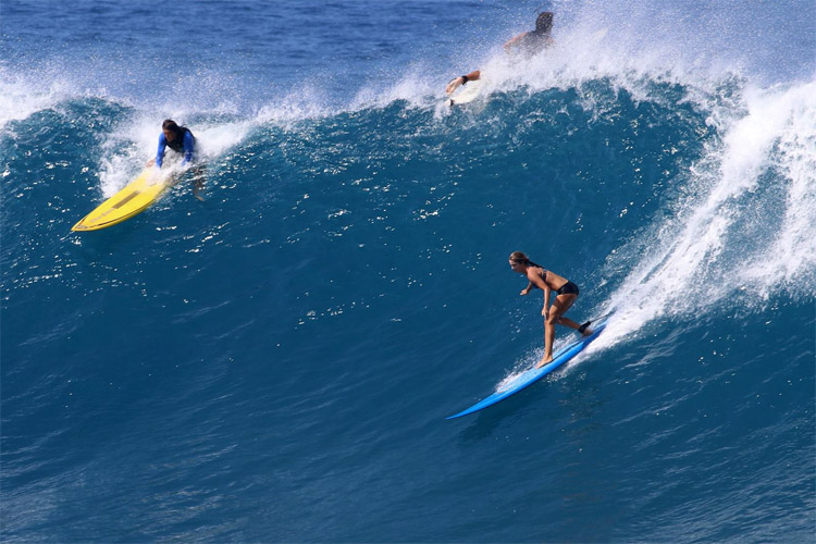 Big wave surfing: the world's best female athletes are getting ready for Waimea Bay | Photo: WWBC
